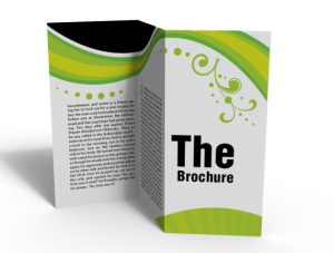 Virtual Assistance Services for Window Cards and Brochures
